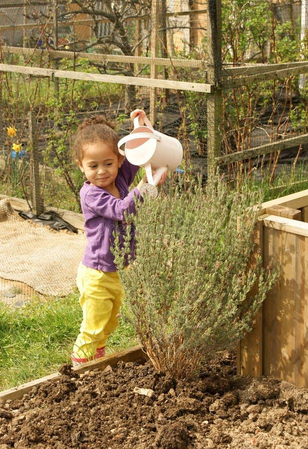 Giovane giardiniere felice fotografie stock libere da diritti