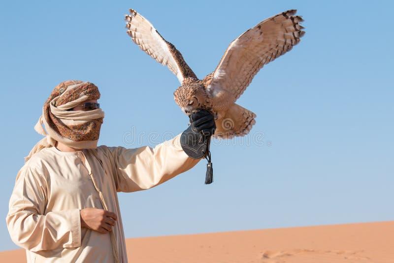 Giovane gufo reale maschio di faraone durante la manifestazione di caccia col falcone del deserto nel Dubai, UAE immagini stock