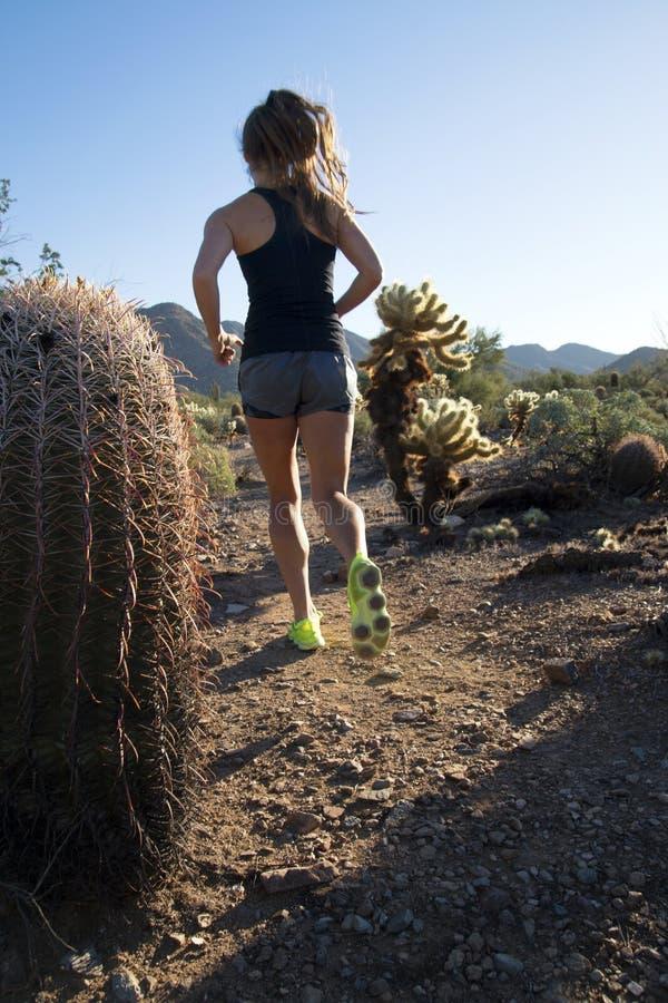 Giovane istruttore femminile Trainer di forma fisica fotografia stock libera da diritti