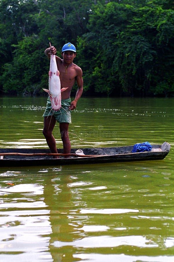 Giovane Kaapor, indiano natale del Brasile immagini stock