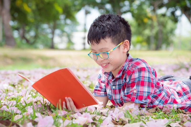 Giovane libro di lettura del ragazzo in parco immagine stock