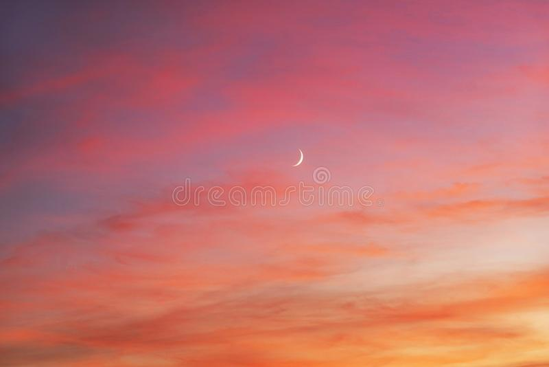 Giovane luna al tramonto fotografia stock