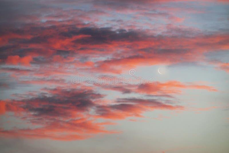 Giovane luna al tramonto immagine stock