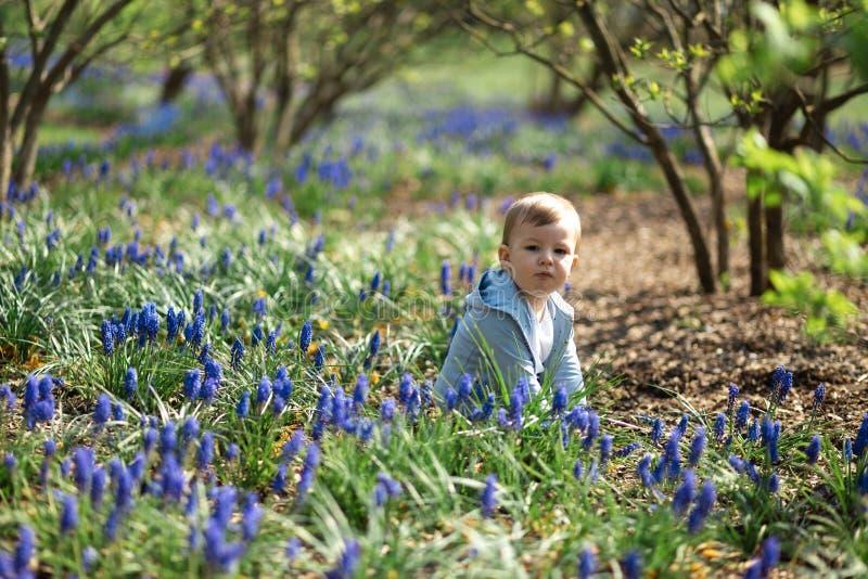 Giovane madre che cammina con un figlio del neonato su un campo del muscari in primavera - giorno soleggiato - giacinto dell'uva immagini stock libere da diritti