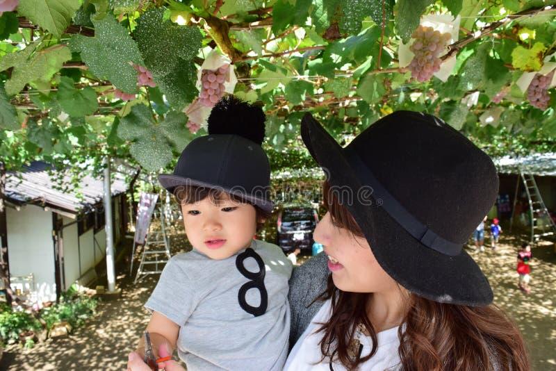 Giovane madre e suo il bambino che mangiano l'uva immagini stock libere da diritti