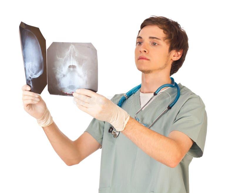 Giovane medico maschio con i raggi X immagine stock