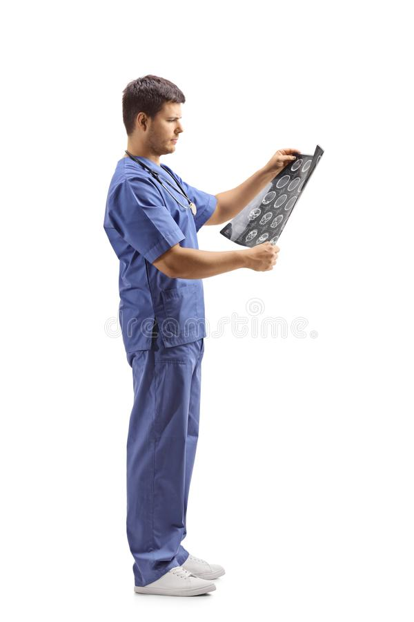 Giovane medico maschio in un'uniforme blu che esamina immagine dei raggi x immagini stock