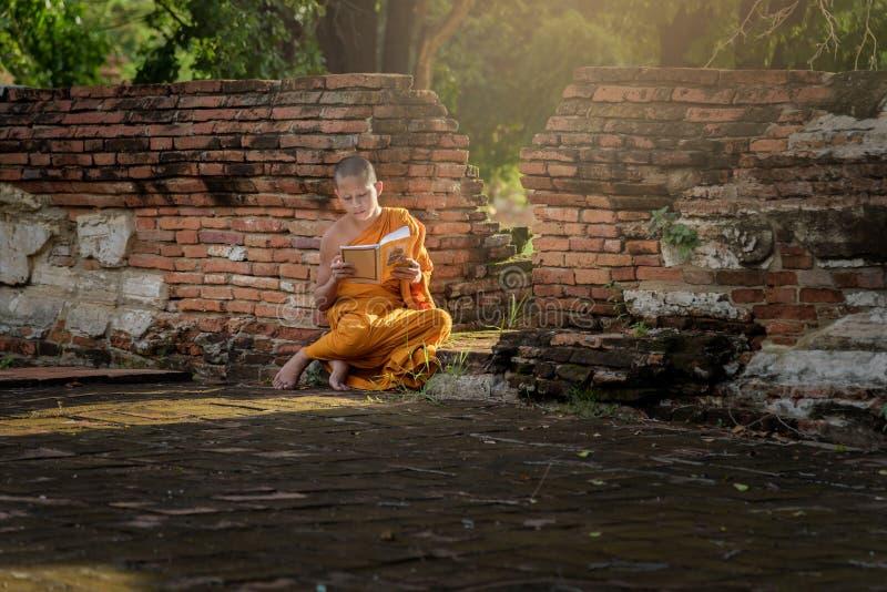 Giovane monaco buddista del principiante fotografia stock