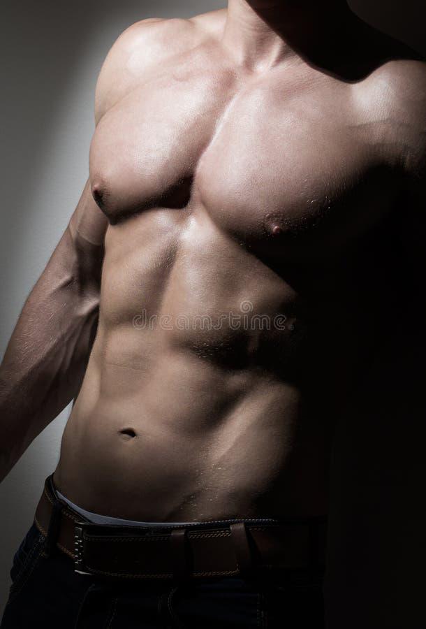 Giovane muscolare equipaggia il torso immagine stock