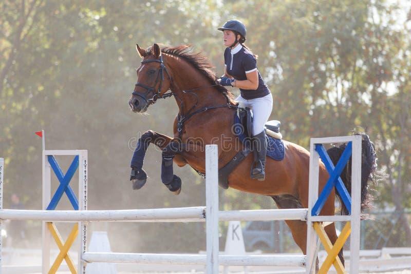 Giovane ragazza del cavaliere del cavallo sulla concorrenza di salto di manifestazione immagine stock