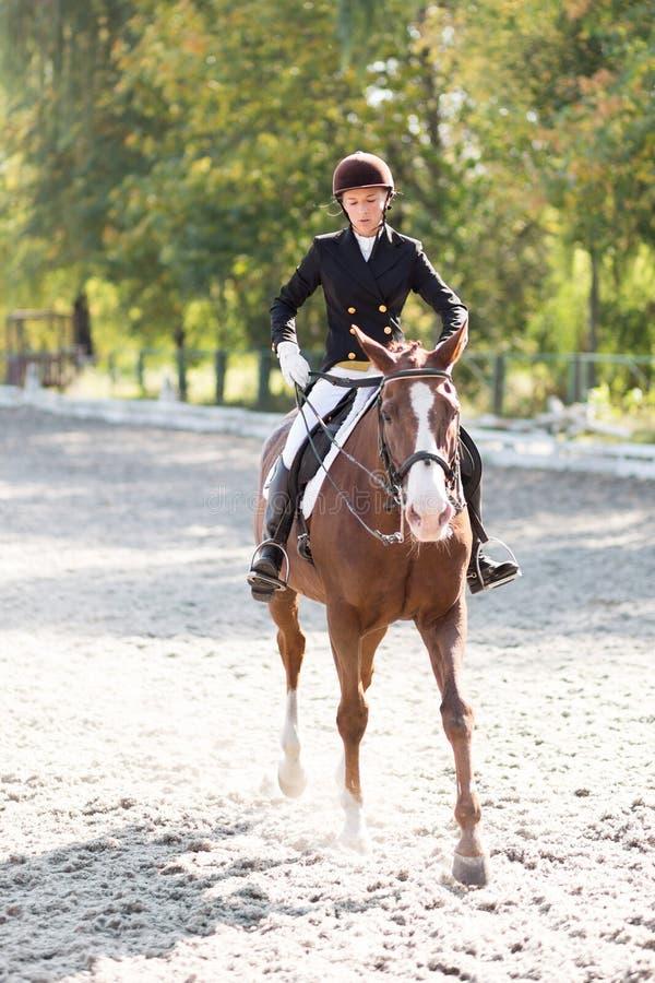 Giovane ragazza del cavaliere del cavallo alla concorrenza di dressage fotografie stock