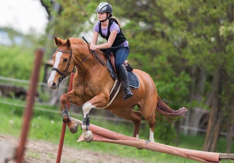 Giovane ragazza graziosa che monta un cavallo - saltando sopra la transenna con il BAC fotografie stock libere da diritti