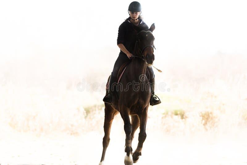 Giovane ragazza graziosa - montare un cavallo nella mattina di inverno fotografie stock libere da diritti