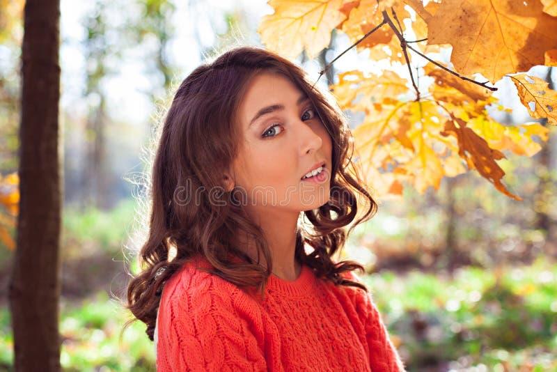 Giovane ragazza graziosa nel bello parco di autunno fotografie stock libere da diritti