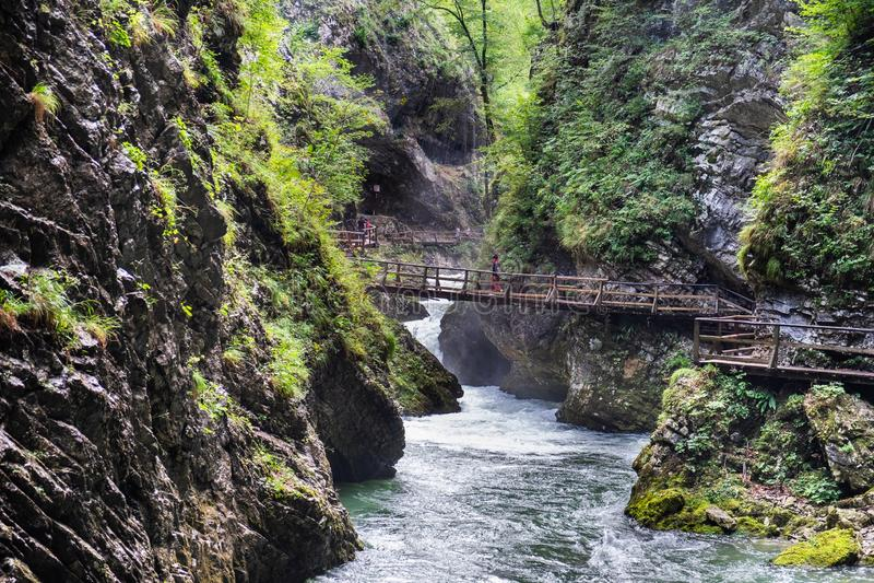Giovane ragazza indefinita che cammina sul ponte di legno al canyon della gola di Vintgar fotografia stock