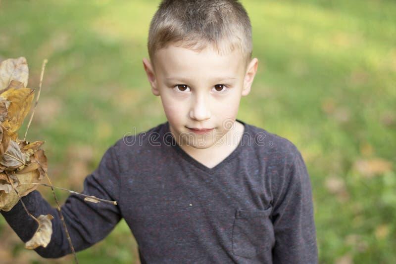 Giovane ragazzo che gioca con le foglie in autunno fotografia stock libera da diritti