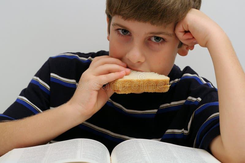 Giovane ragazzo che mangia un panino fotografia stock