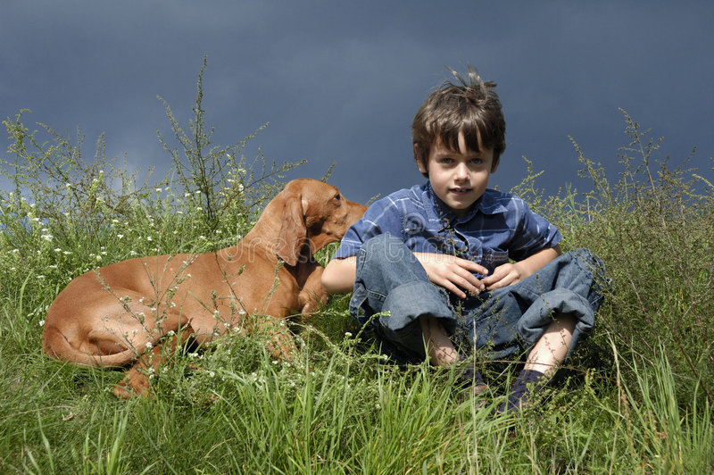 Giovane ragazzo che si siede nell'erba immagine stock