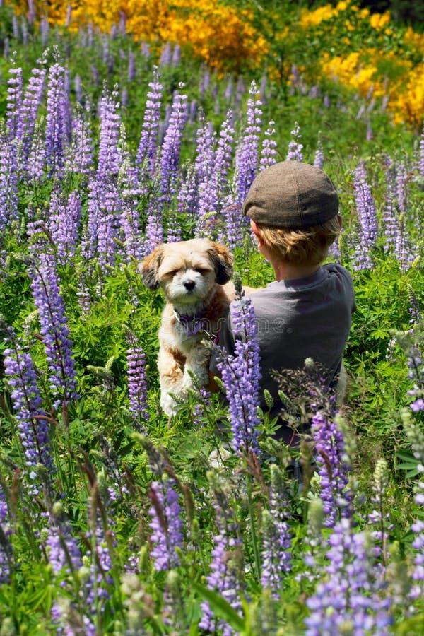 Giovane ragazzo con il suo cucciolo fotografia stock libera da diritti