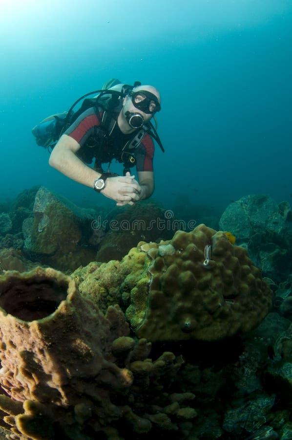 Giovane ritratto maschio dell'operatore subacqueo di scuba immagini stock libere da diritti