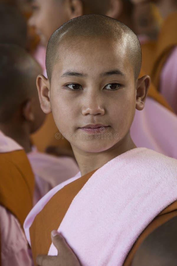 Giovane suora del principiante - Pegu - Myanmar fotografia stock libera da diritti