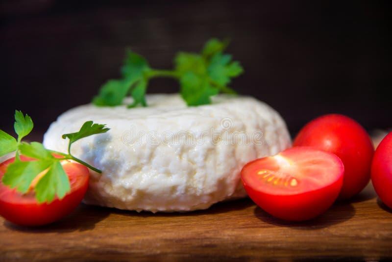 Giovane tagliere del formaggio della quercia con i pomodori ed il prezzemolo Mozarella per le pizze e le insalate fotografia stock