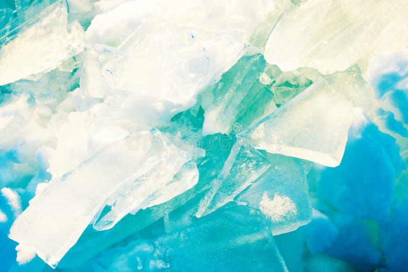 Giovane Toros Il lustro del ghiaccio al sole gradisce i gioielli immagine stock