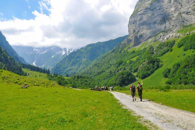 Giovane trekking in alpi su un sexy, Svizzera delle viandanti, con il supporto fotografia stock libera da diritti