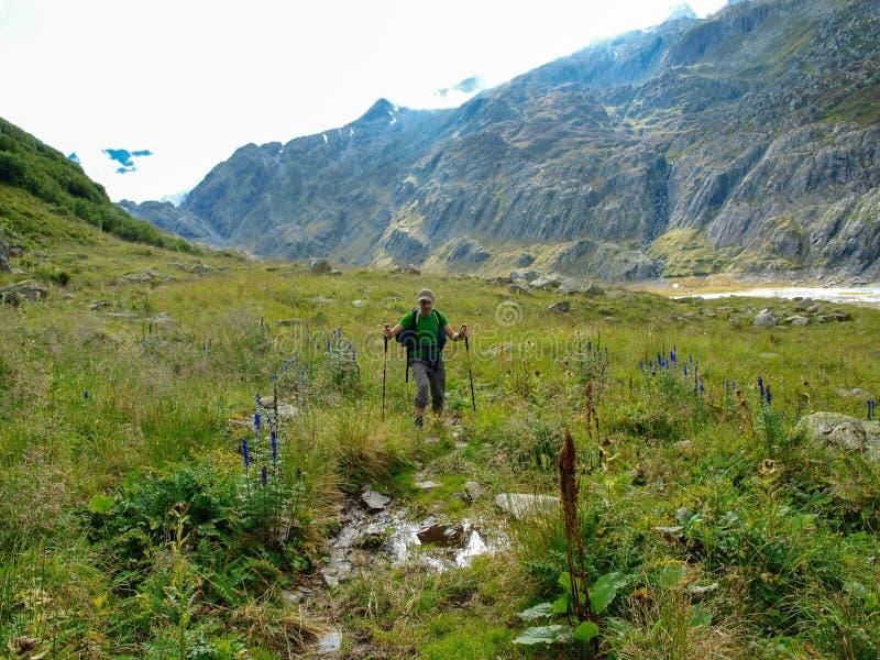 Giovane trekking della viandante in alpi, Svizzera, con le montagne in fotografia stock libera da diritti