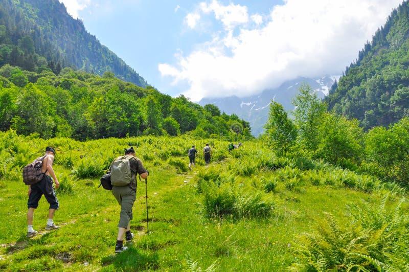 Giovane trekking delle viandanti in alpi, Svizzera, con le montagne nei precedenti immagine stock libera da diritti