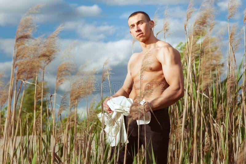 Giovane uomo macho con una bella figura di sport fotografia stock libera da diritti