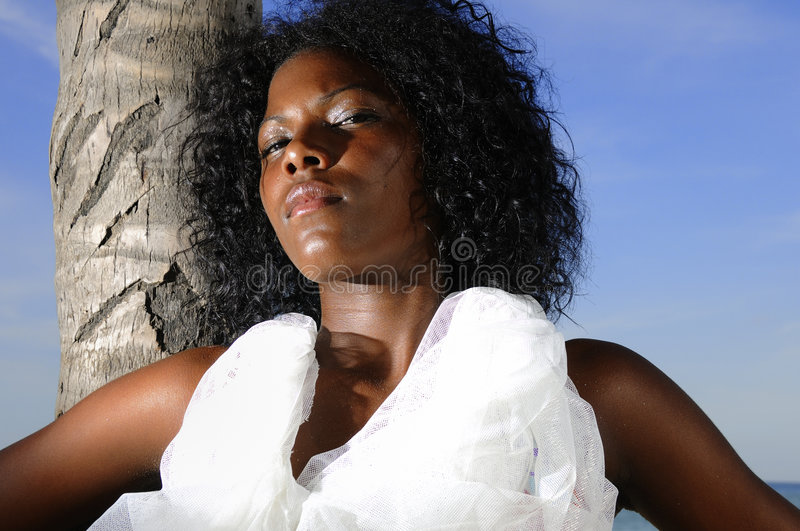 giovani afro di bellezza fotografia stock libera da diritti