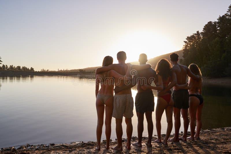 Giovani amici adulti che ammirano vista da lakeshore, vista posteriore fotografia stock libera da diritti