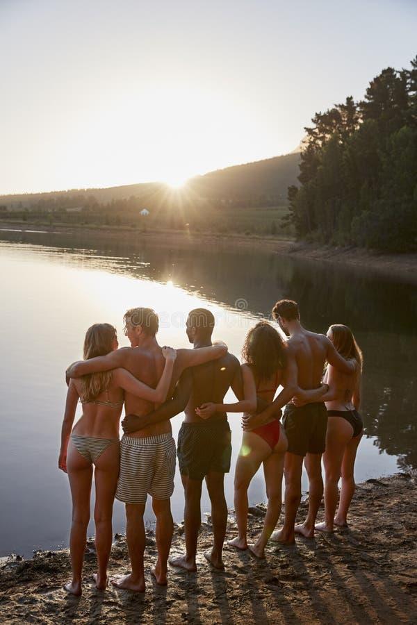 Giovani amici adulti che stanno sopra lakeshore, verticale immagine stock libera da diritti
