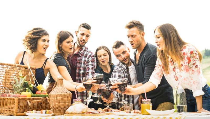 Giovani amici divertendosi vino rosso all'aperto bevente al ricevimento all'aperto del barbecue fotografie stock libere da diritti