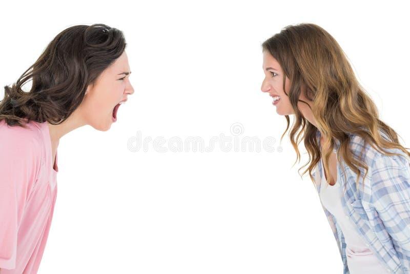 Giovani amici femminili arrabbiati che hanno una discussione immagini stock