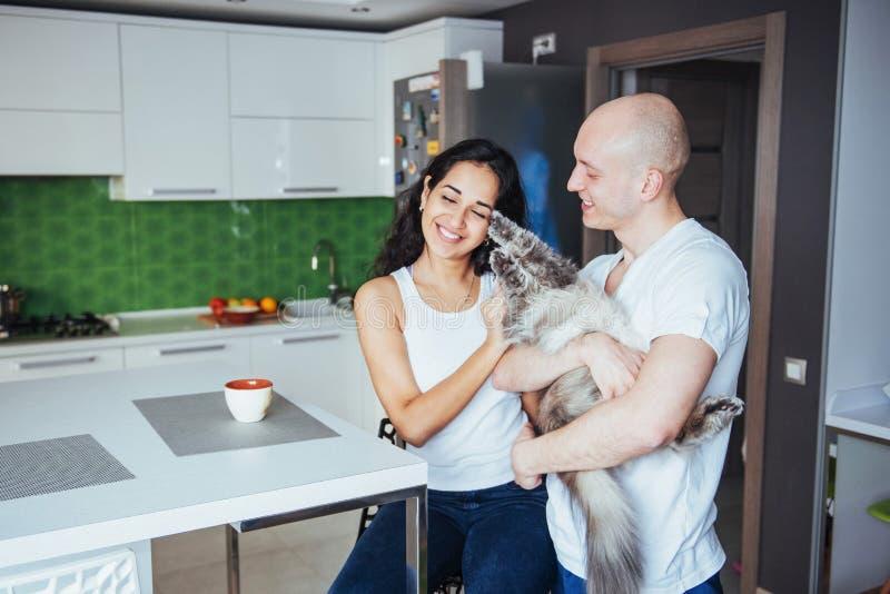 Giovani belle coppie felici che si siedono a sorridere del gatto della cucina immagine stock libera da diritti