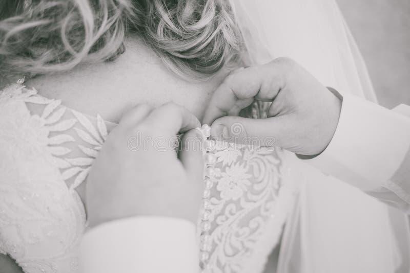 Giovani belle mani del maschio e della sposa che abbottonano vestito da sposa immagine stock