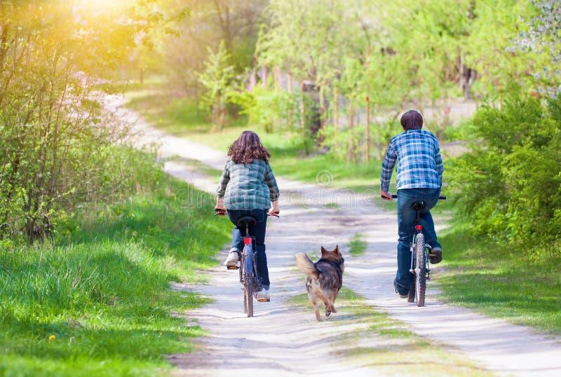 Giovani biciclette felici di giro delle coppie immagini stock