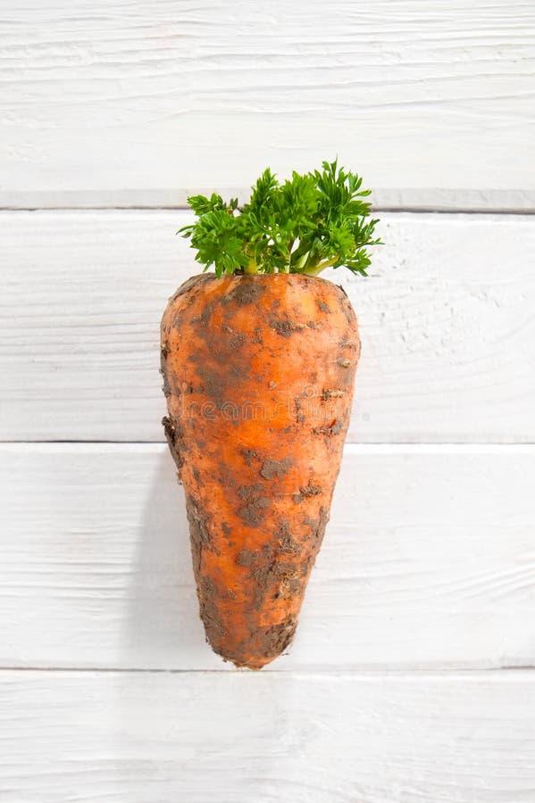 Giovani carote fresche con cime su una tavola di legno bianca fotografia stock