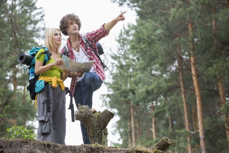 Giovani che fanno un'escursione le coppie con la mappa che discute sopra la direzione nella foresta immagine stock libera da diritti