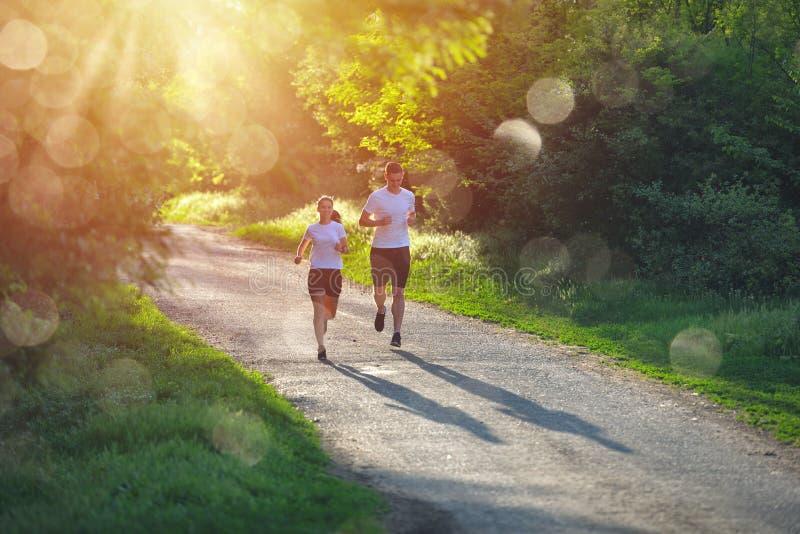 Giovani che pareggiano e che si esercitano in natura, alla luce calda di alba di mattina fotografie stock libere da diritti