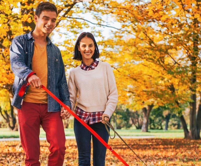 Giovani coppie che camminano all'aperto nel parco di autunno con i cani immagine stock