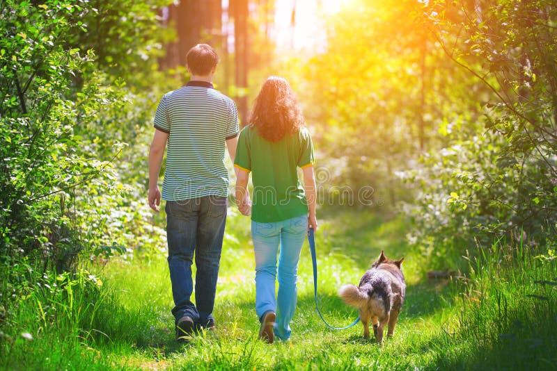 Giovani coppie che camminano con il cane immagini stock libere da diritti