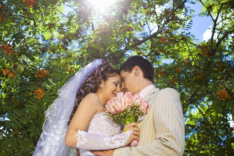 Giovani coppie di cerimonia nuziale immagine stock