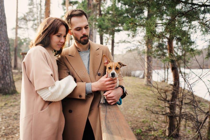 Giovani coppie romantiche felici che camminano insieme al cane del terrier di Russel della presa in autunno immagini stock