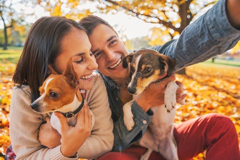 Giovani coppie sorridenti con i cani all'aperto che fanno selfie immagini stock libere da diritti