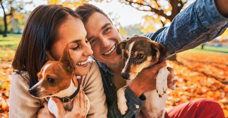 Giovani coppie sorridenti con i cani all'aperto nel parco di autunno che fa Se immagini stock libere da diritti