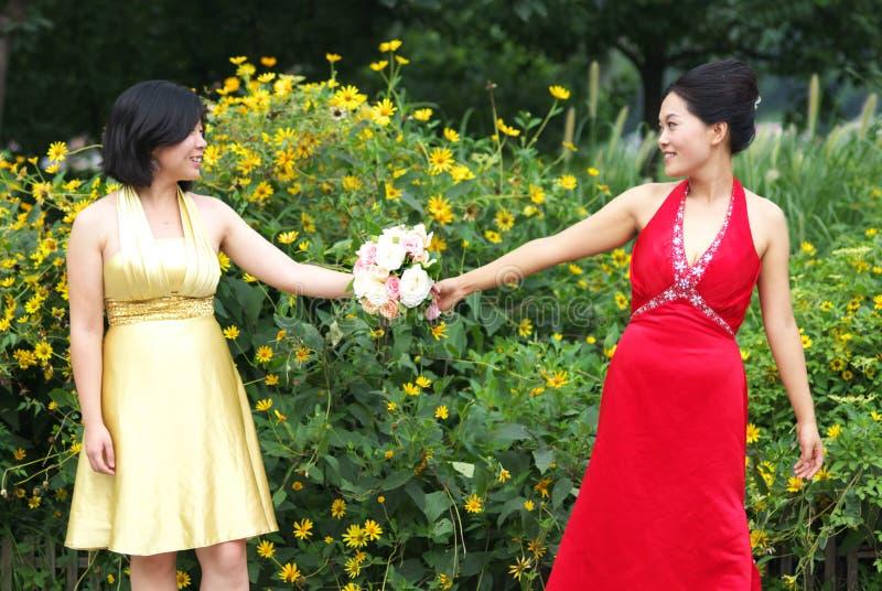 Giovani donne asiatiche fotografia stock