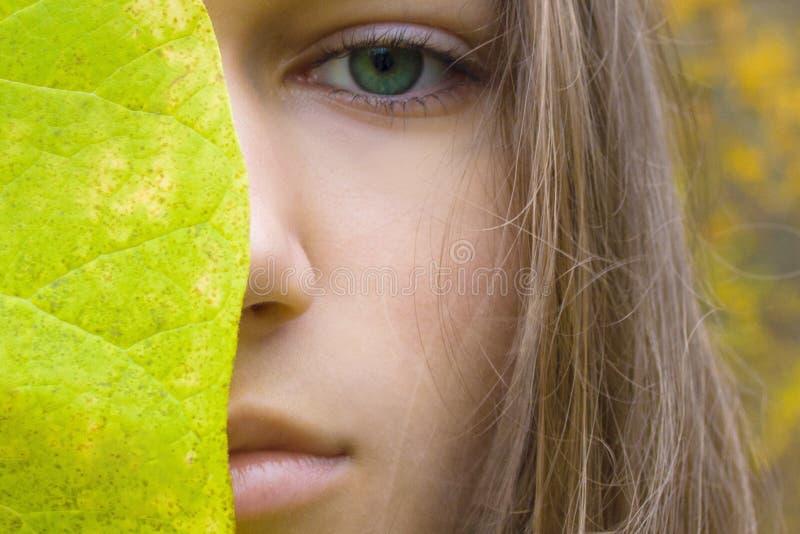 Giovani donne bionde di bellezza con gli occhi verdi Modello teenager della ragazza e foglia verde sul fondo giallo della foresta fotografia stock libera da diritti